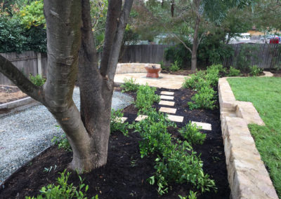 Gardengigs - Cook Landscaping After Project Tree